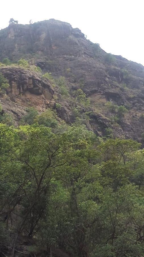 Área de montanha em Sri Lanka fotos de stock