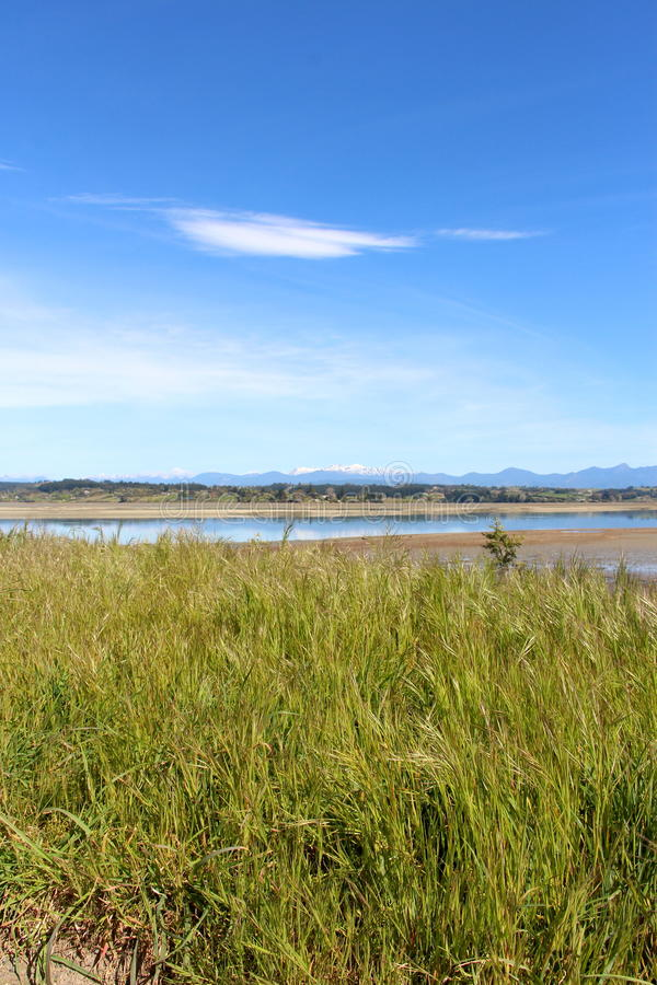Área de Nueva Zelanda Nelson de la isla de Rabit foto de archivo libre de regalías
