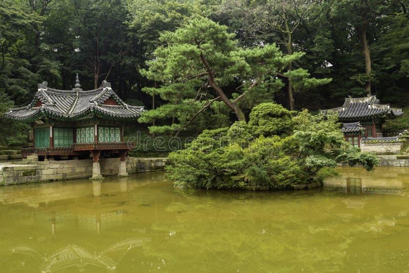 Área del jardín secreto de Changdeokgung fotografía de archivo libre de regalías