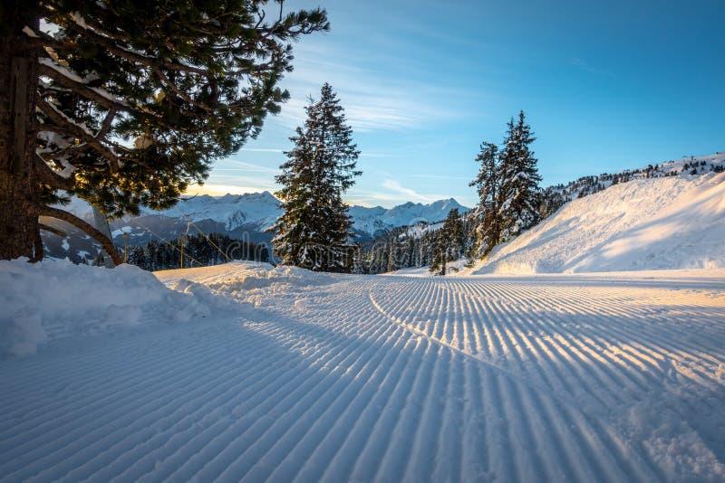 área do esqui com tempo fantástico fotos de stock royalty free