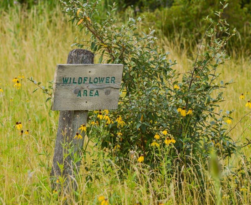 Área do Wildflower fotografia de stock