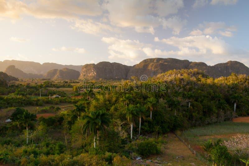 Área famosa do cigarro da terra de Cuba no por do sol, Vale de Vinales fotografia de stock royalty free