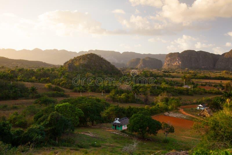 Área famosa do cigarro da terra de Cuba no por do sol, Vale de Vinales, C foto de stock royalty free