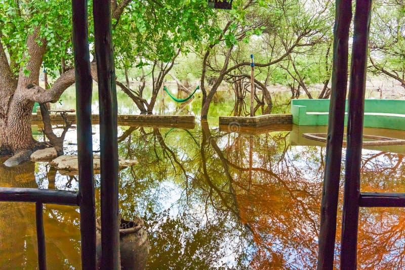 Área inundada do alojamento em Botswana imagem de stock
