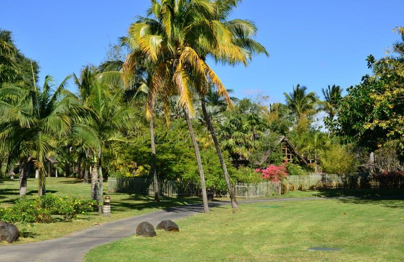 Área pintoresca del La Pointe Canonniers aux. en Mauritius Repu fotografía de archivo
