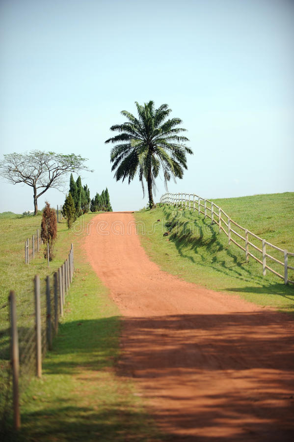 Área rural foto de stock