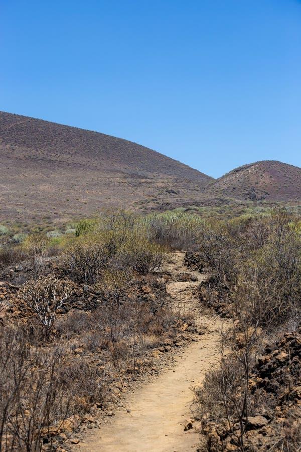 Área vulcânica da calha do trajeto da ilha de Tenerife, canário, Espanha fotos de stock