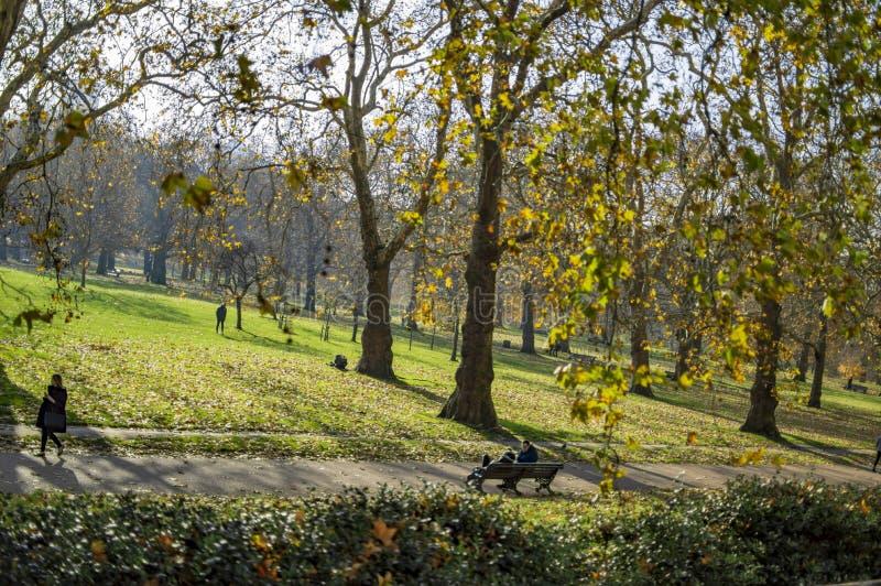?reas verdes e bancos para basculadores em Hyde Park fotografia de stock