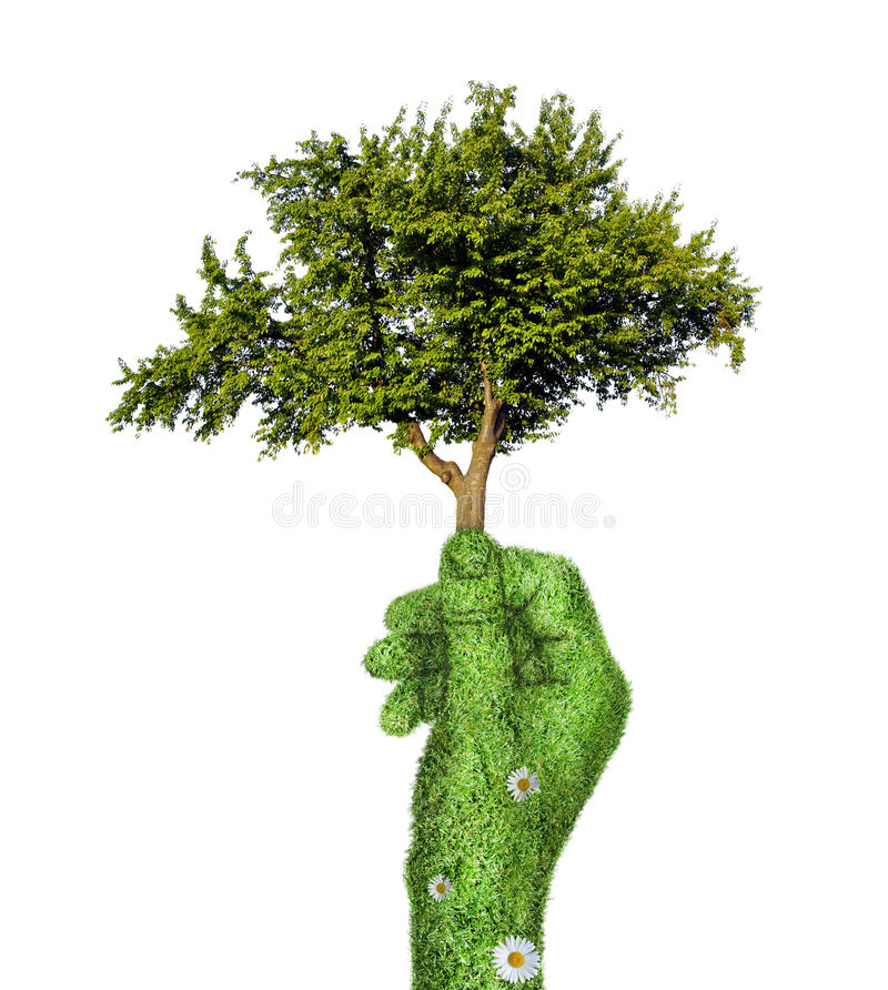Árvore à disposicão ilustração do vetor