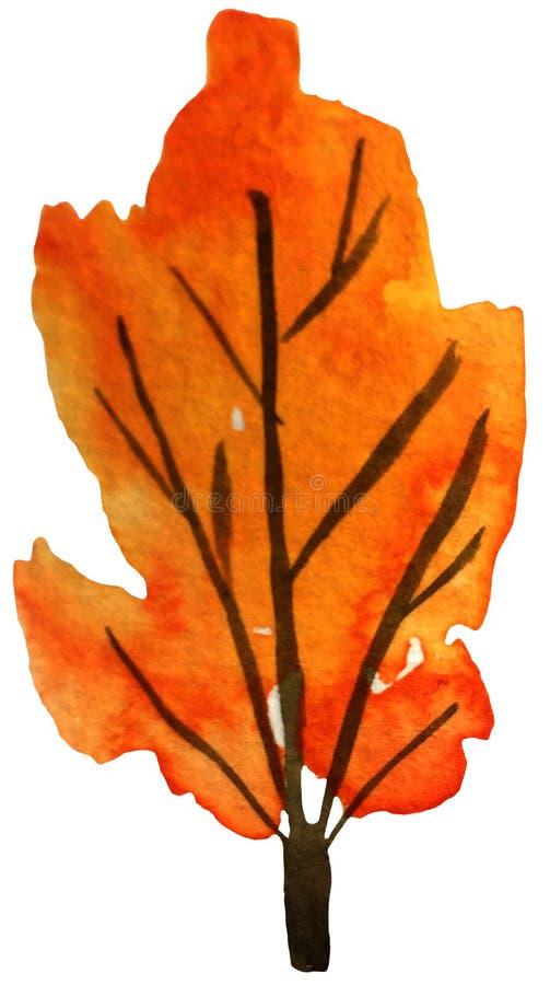 Árvore alaranjada do outono em um fundo branco ilustração da aquarela para cópias, cartão, cartazes ilustração do vetor