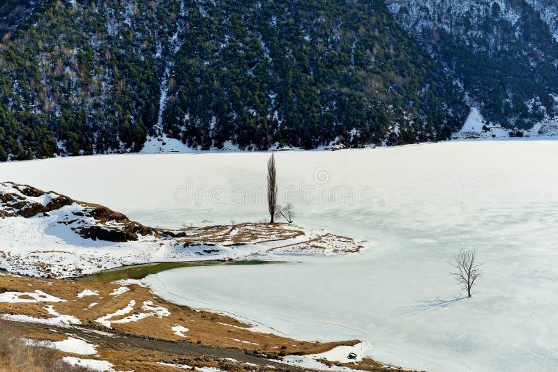Árvore apenas congelada em um rio congelado no inverno em um fundo das montanhas imagens de stock