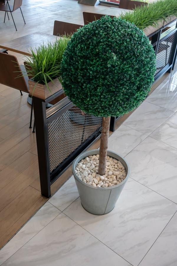 Árvore artificial pequena em um potenciômetro com a pedra branca do cascalho para a decoração interior fotos de stock