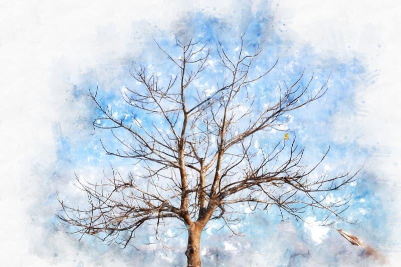 Árvore bonita abstrata do ramo na aquarela colorida ilustração stock