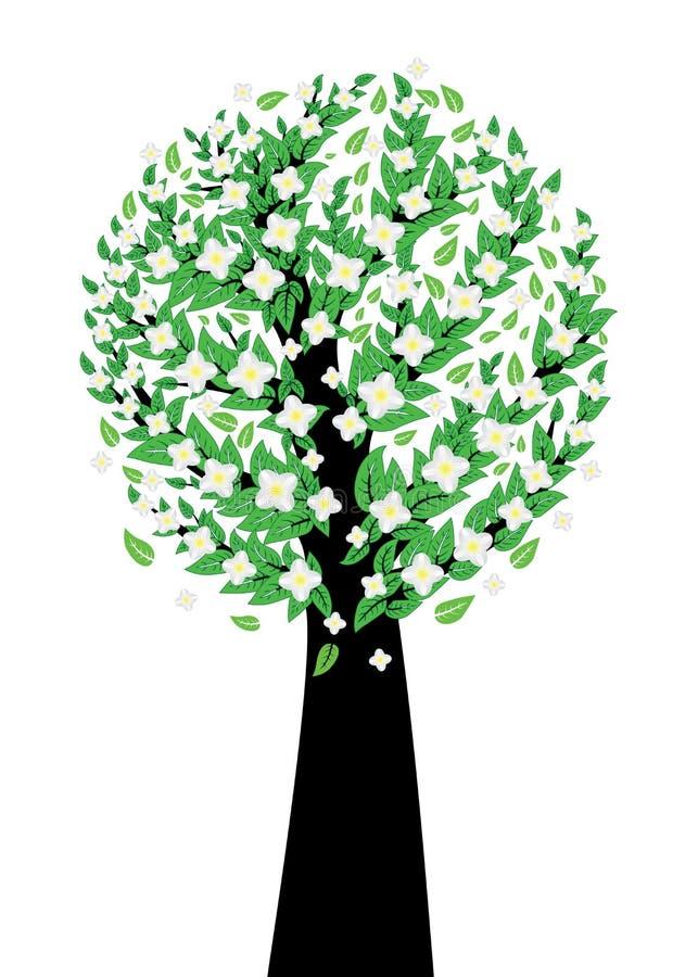 Árvore branca da flor ilustração royalty free