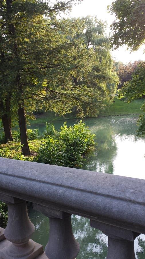 Árvore calma lagoa alinhada fotos de stock royalty free