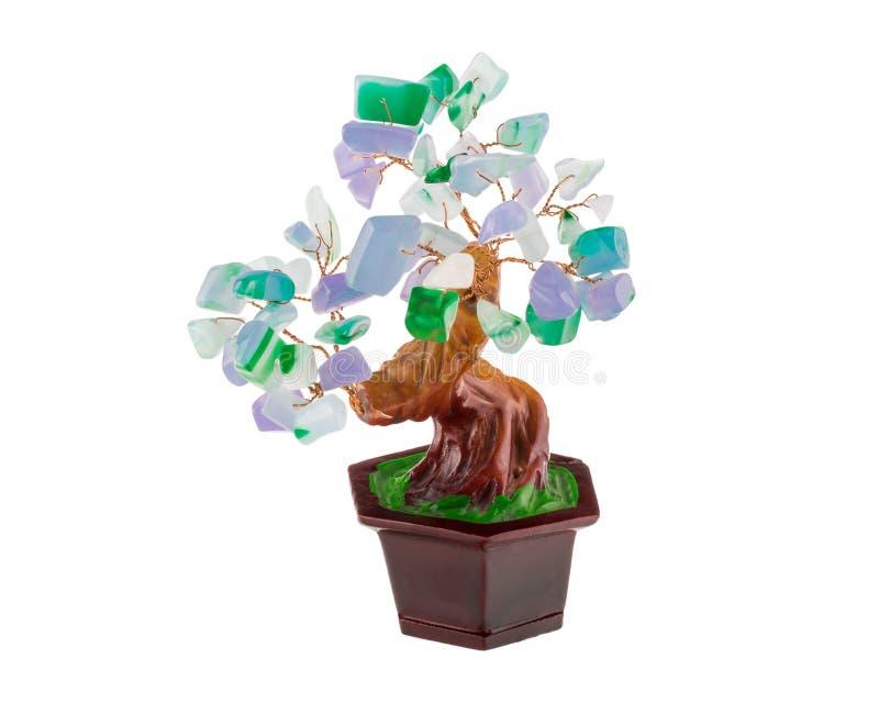 Árvore chinesa do dinheiro dos bonsais, símbolo do shui do feng foto de stock royalty free