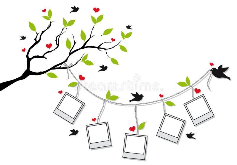 Árvore com frames da foto e pássaros, vetor