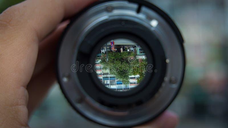 Árvore com o objetivo foto de stock