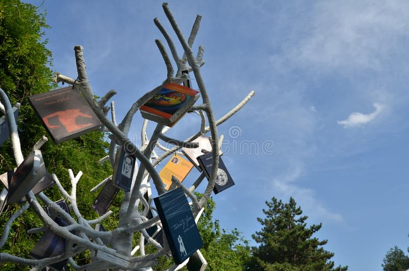 Árvore com os livros no parque fotos de stock