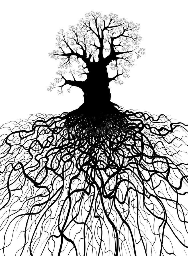 Árvore com raizes ilustração royalty free