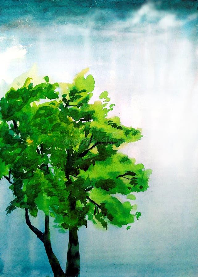 Árvore da aquarela imagens de stock royalty free