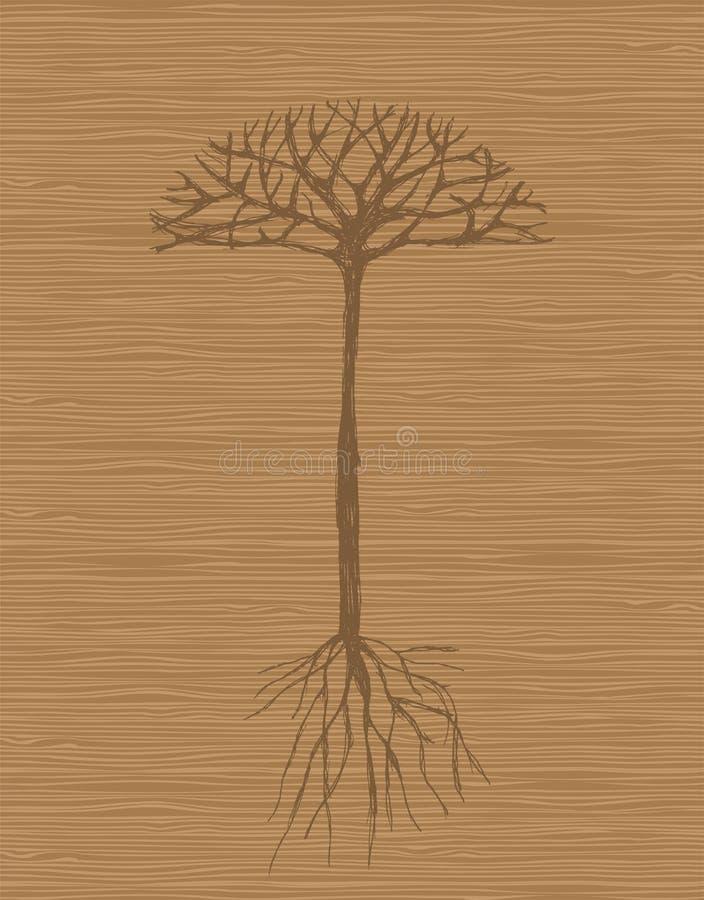 Árvore da arte com raizes no fundo de madeira ilustração stock