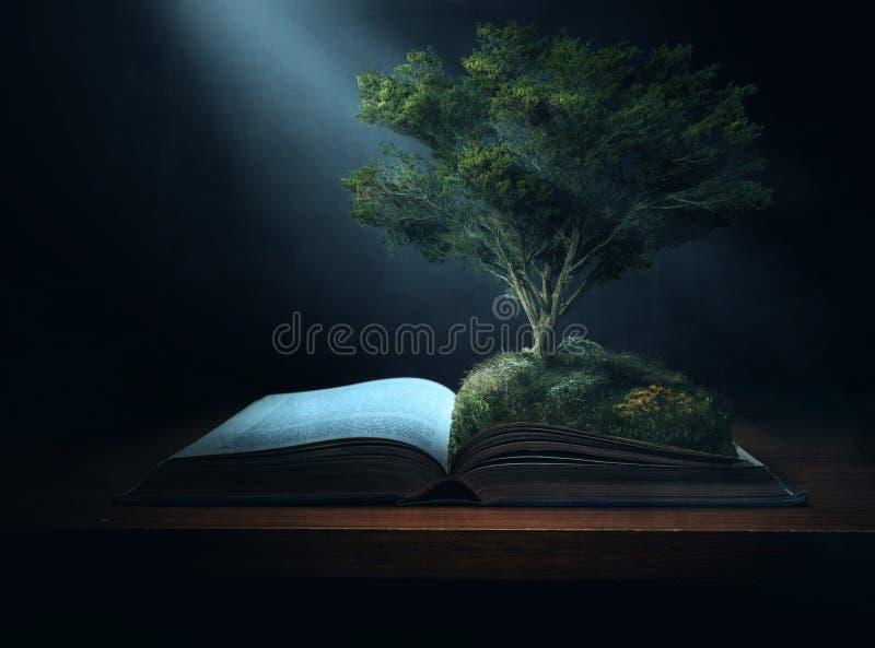 Árvore da Bíblia imagens de stock royalty free