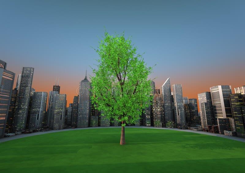 Árvore da cidade