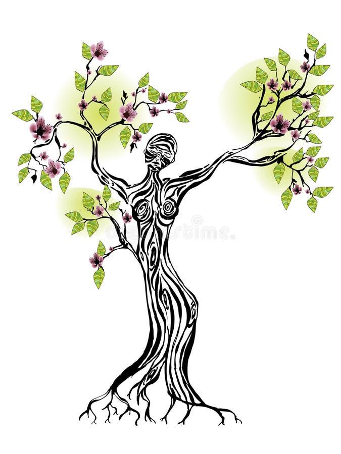 Árvore da mola com silhueta das mulheres ilustração stock