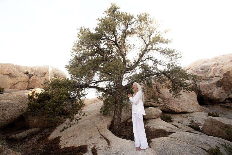 ?rvore da mulher madura saud?vel da vida fotos de stock royalty free