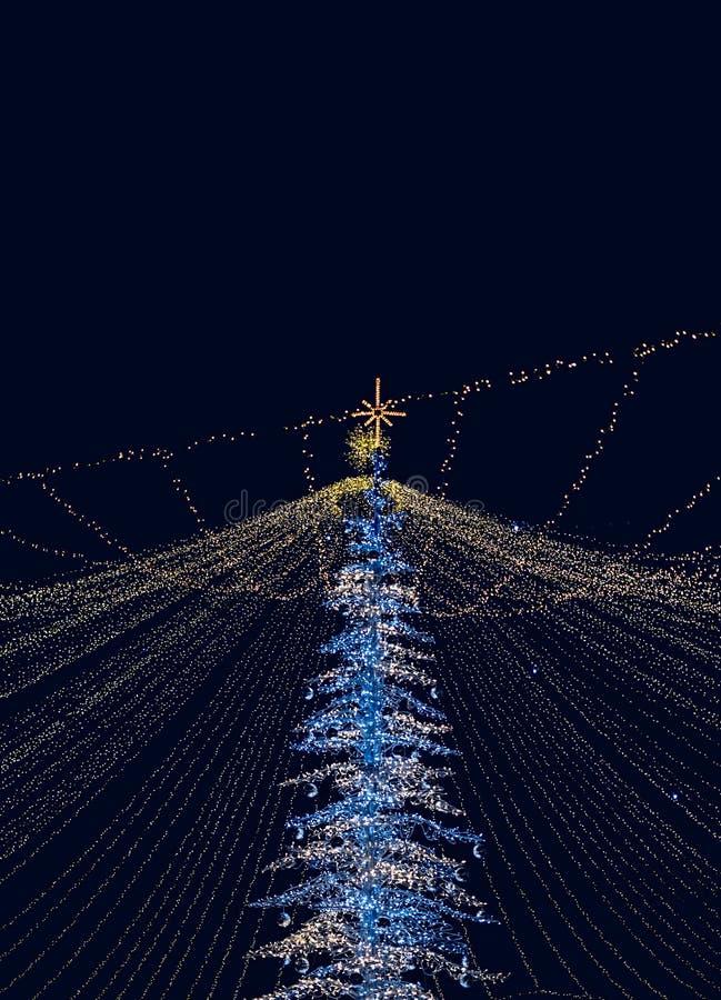 Árvore das decorações do Natal com luzes do diodo emissor de luz foto de stock royalty free