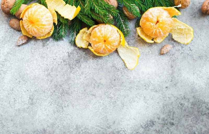 Árvore de abeto das tangerinas da composição do ano novo do Natal fotos de stock royalty free