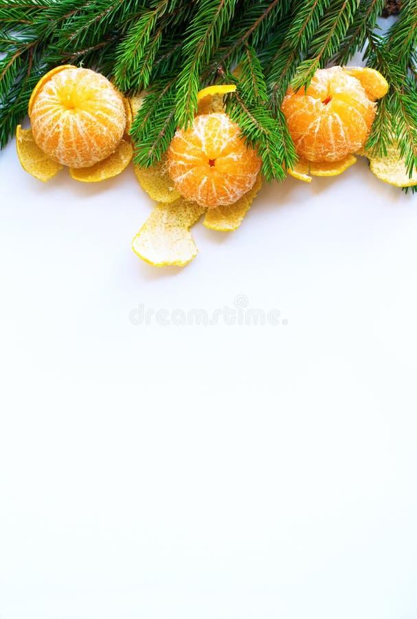 Árvore de abeto das tangerinas da composição do ano novo do Natal imagens de stock royalty free