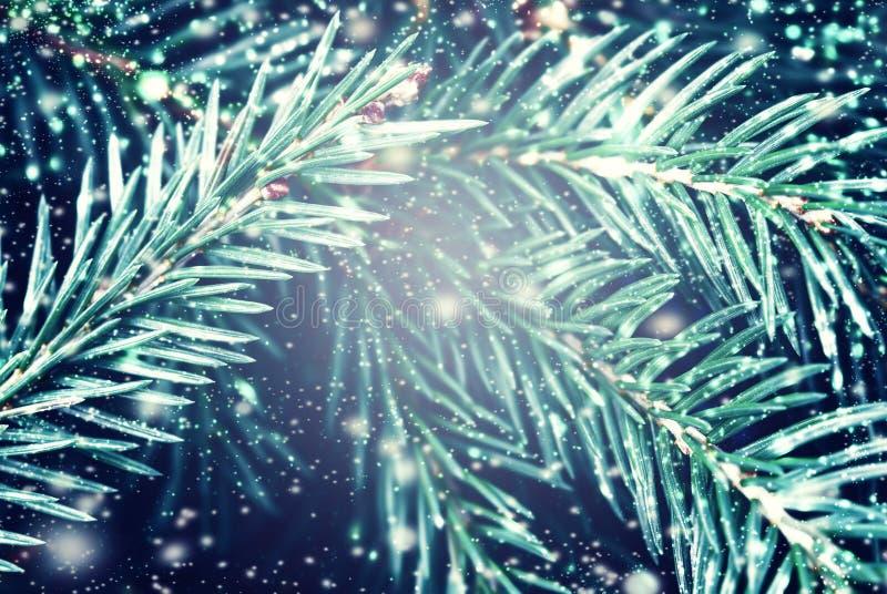 A árvore de abeto do Natal com flocos de neve pode usar-se como o fundo e o Chr fotografia de stock