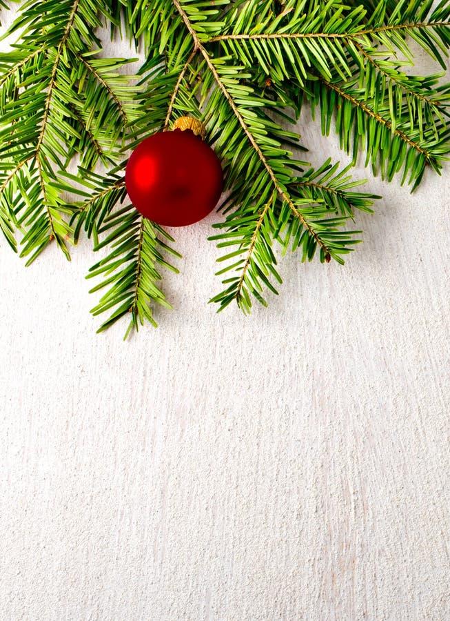 Árvore de abeto do Natal no fundo branco fotografia de stock