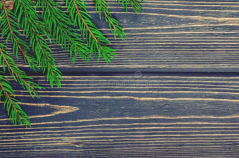 Árvore de abeto do Natal no fundo de madeira imagem de stock royalty free