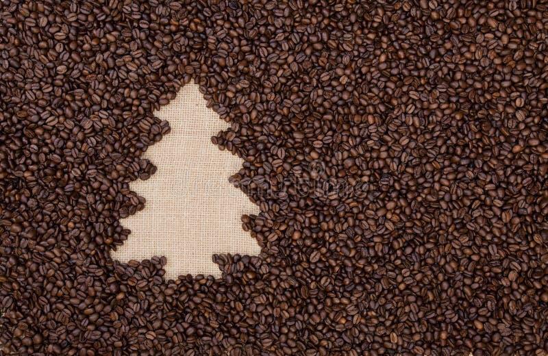 Árvore de abeto feita de feijões de café fotografia de stock royalty free