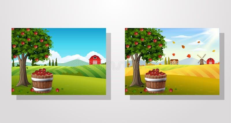 Árvore de Apple e cesta das maçãs na paisagem da exploração agrícola ilustração royalty free