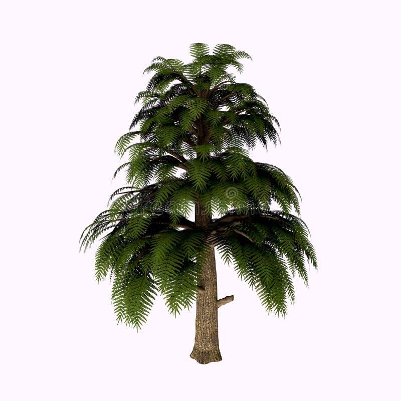 Árvore de Archaeopteris ilustração stock