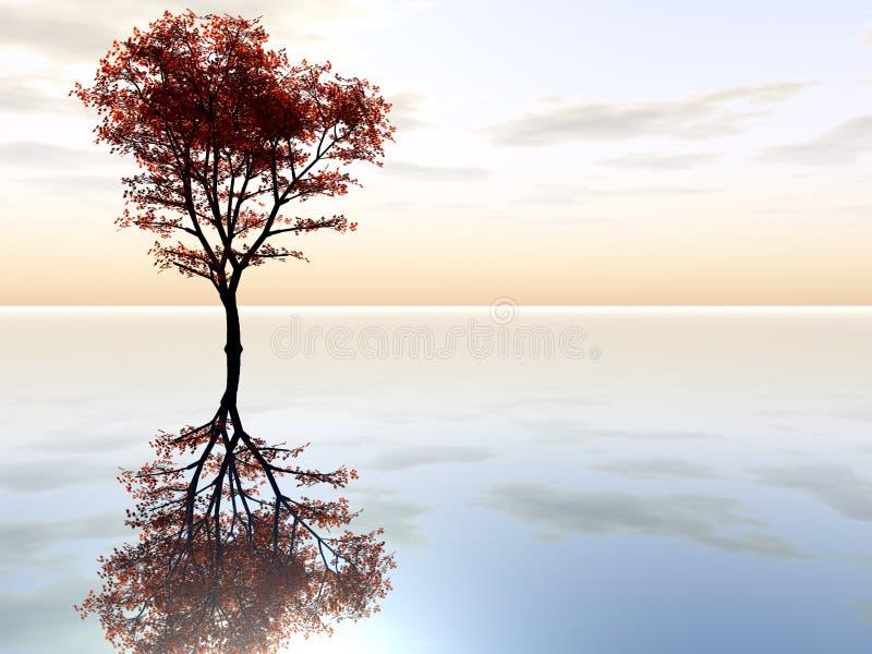 Árvore de bordo