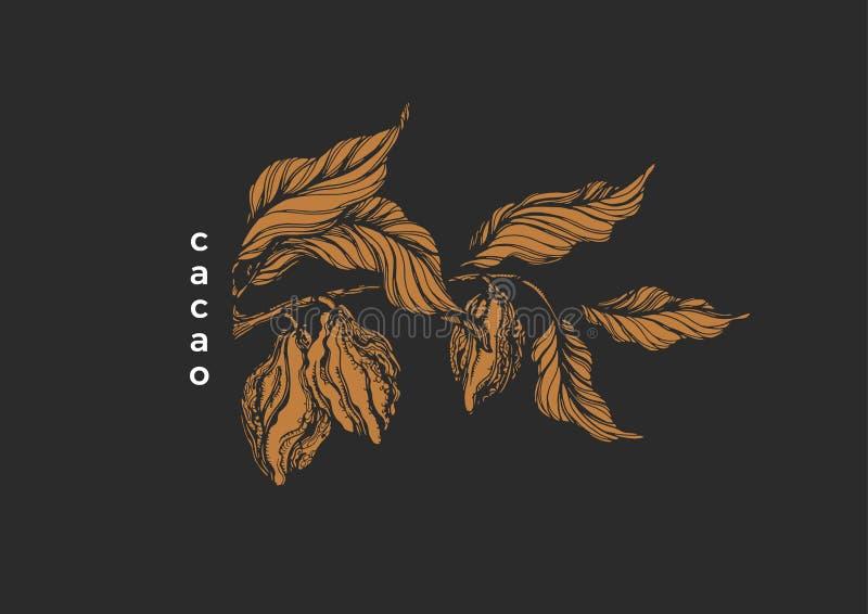 Árvore de cacau tropical da ilustração da natureza do chocolate do símbolo gráfico de vetor ilustração do vetor