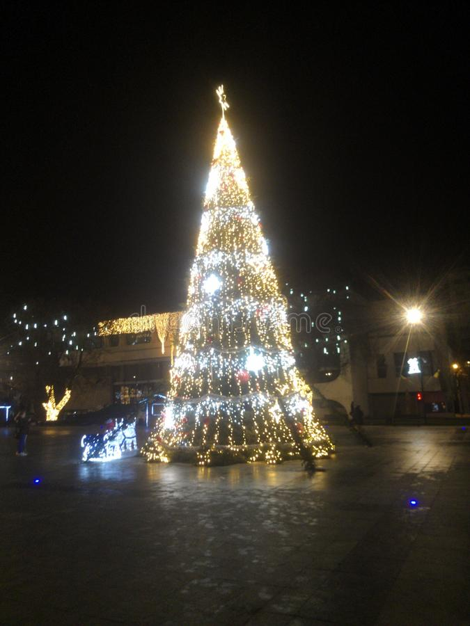 Árvore de Christmass foto de stock