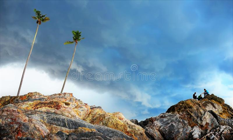 Árvore de coco na rocha da praia fotografia de stock royalty free
