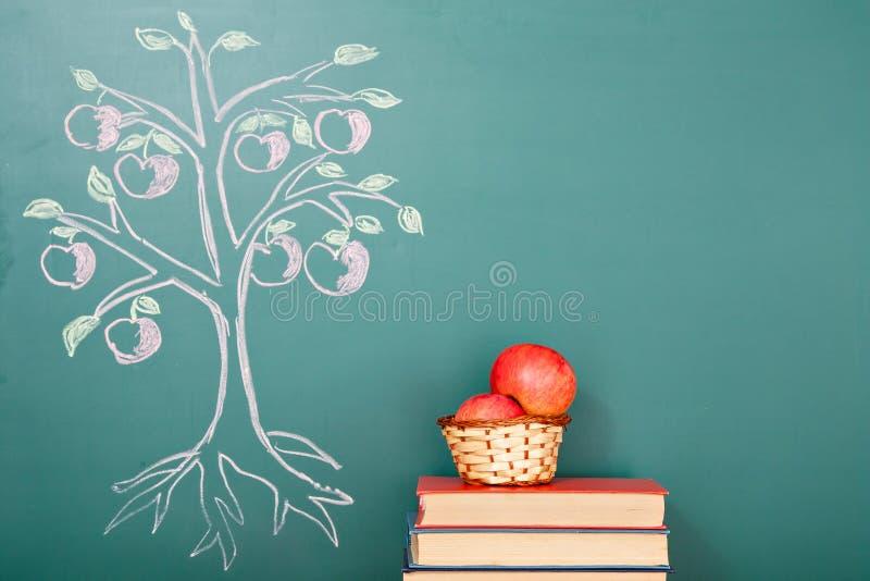 Árvore de conhecimento foto de stock