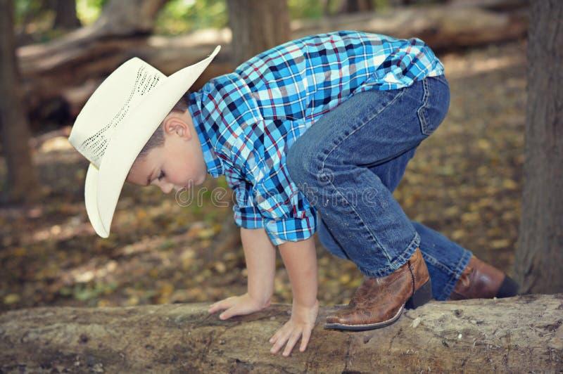 Árvore de escalada do menino imagem de stock