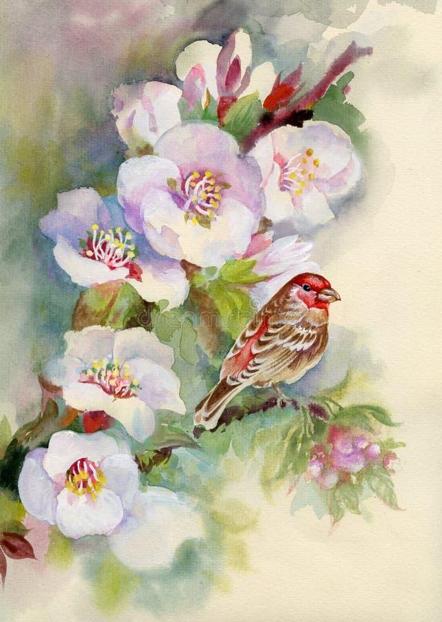 Árvore de florescência coberta com as flores ilustração royalty free