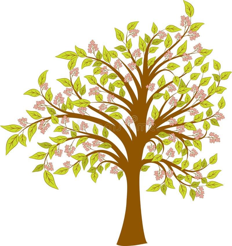 Árvore de florescência da mola, vetor ilustração stock