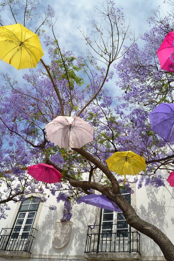 Árvore de guarda-chuva de flutuação fotografia de stock royalty free