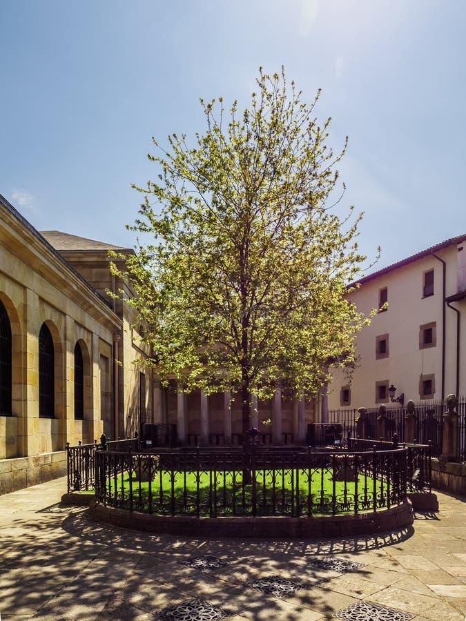 A árvore de Guernica Gernika, país Basque foto de stock royalty free