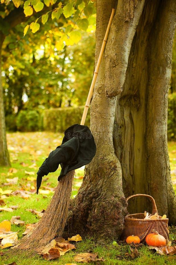 Árvore de Halloween de uma bruxa fotos de stock